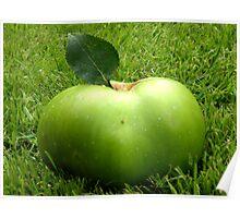 Grass Apple Poster