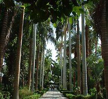 Botanic Gardens Kitchener Island Egypt by inglesina