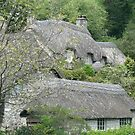 Thatched Hamlet by Sue Leonard
