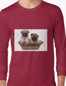 two cute pug puppy Long Sleeve T-Shirt