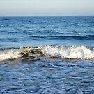 Take me to the sea by Debbie Vine