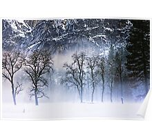 Yosemite Winter Fog Poster