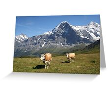 The Eiger and cows!! Greeting Card