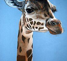 Giraffe portrait by Robbiegraham