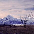 Aoraki/Mount Cook, Mount Cook National Park by Paul Mercer