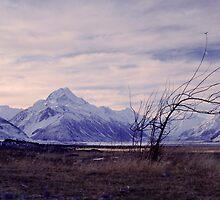 Aoraki/Mount Cook, Mount Cook National Park by Paul Mercer