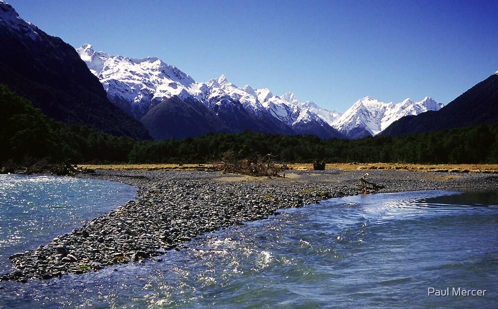 Eglinton River, Fiordland National Park, New Zealand by Paul Mercer