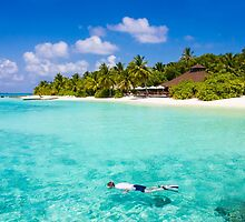 Snorkelling in the Maldivian Atolls - Indian Ocean by Digital Editor .
