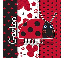 Gaston the Ladybird Photographic Print