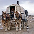 Sheep Wagon, Red Desert, Wy by A.M. Ruttle