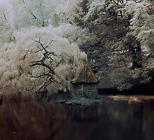An Island by Arthur Indrikovs