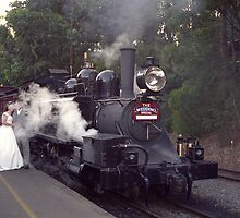 Puffing Billy the Wedding Train, Belgrave, Victoria by Bev Pascoe