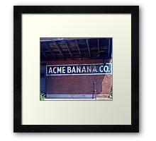 Go Bananas Framed Print