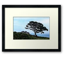 Boughing To Nature Framed Print