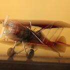 """""""B b bi - plane"""" by Gail Mew"""