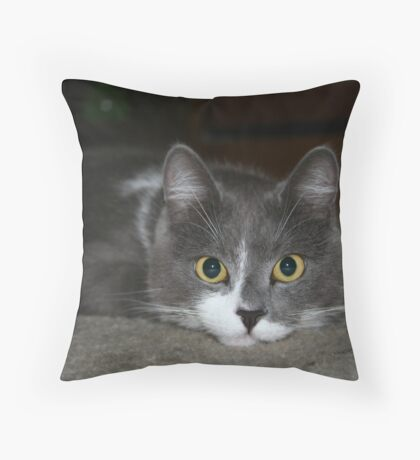 You Did What? © Vicki Ferrari Photography Throw Pillow