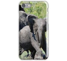 O NO, THIS IS MY SPACE! THE AFRICAN ELEPHANT – Loxodonta Africana - AFRIKA OLIFANT iPhone Case/Skin