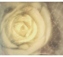 White Beauty -True Romance Photographic Print