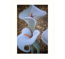 Arum Lily Duet Art Print
