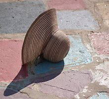 Pastel by Diana Mankowski
