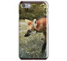 The long legged wolf iPhone Case/Skin