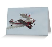 A wing walker Greeting Card