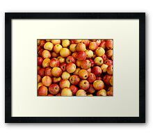 Apples! Framed Print
