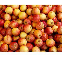 Apples! Photographic Print