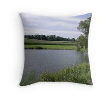 A Sunny Day in PA Throw Pillow
