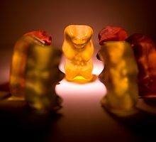 Gummy Bear Photography - A Summit Conference  by michalfanta
