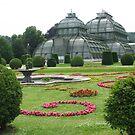 Schoenbrunn Palmenhaus Garden by Elena Skvortsova