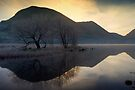 Frosty Brotherswater by David Lewins