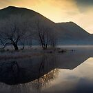 Frosty Brotherswater by David Lewins LRPS