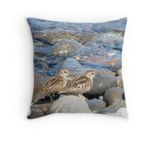 Least Sandpiper Throw Pillow