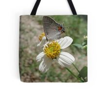 Hairstreak on Spanish Needles Tote Bag
