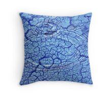 dry ripples Throw Pillow