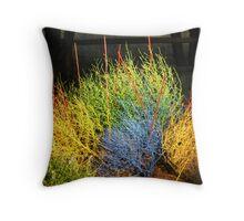 Tumbling Technicolor Throw Pillow