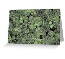 Groundcover Abstract Greeting Card