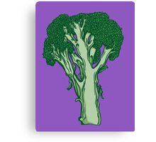 Anatomic Broccoli Canvas Print