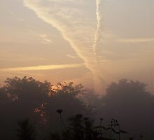 Beautiful jet trails at sunrise by Melody Dawn Bills