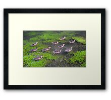 Ten Little Ducks Framed Print