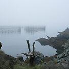Foggy Weir 2 by Sean McConnery
