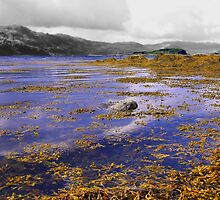 Lochcarron at High Tide by Mike Honour