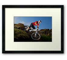 Sam Dale Framed Print