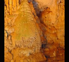 Rock Forest by Christine Richardson
