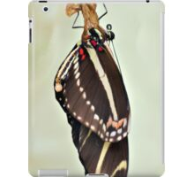 New Zebra Longwing Butterfly iPad Case/Skin