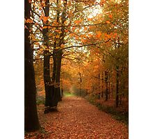 A Tribute to Fall Photographic Print