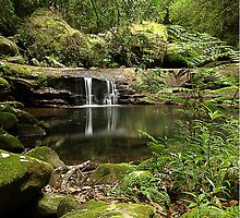 Lyrebird Pool, Kangaroo Valley, NSW by Malcolm Katon
