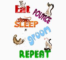 Eat, Pounce, Sleep, Groom, Repeat.. Womens Fitted T-Shirt