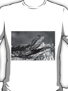 Black and White Baby Bearded Dragon T-Shirt